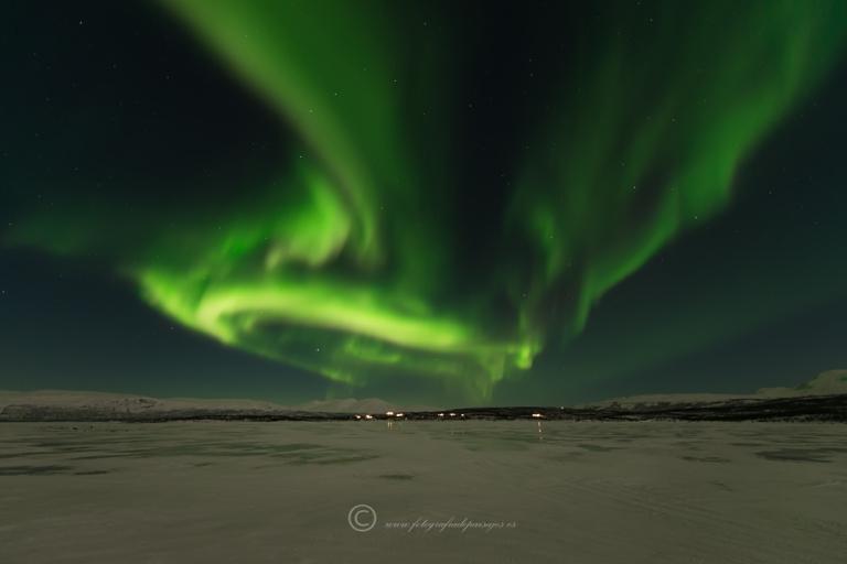 boreal_lago_suecia